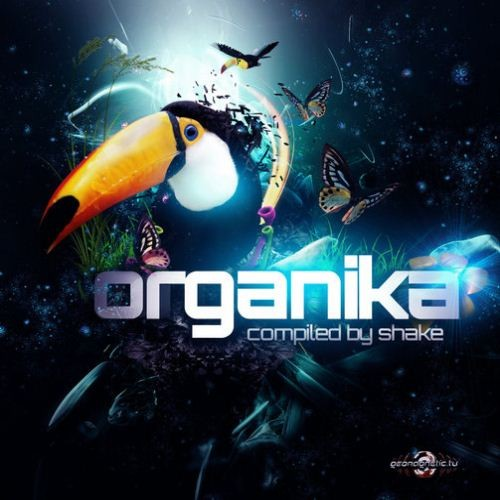 Compilation: Organika