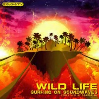 Compilation: Wild Life 3 Surfing On Soundwaves - Compiled by DJ Starspine