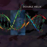 Compilation: Double Helix