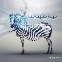 Loopstep - Coded Patterns