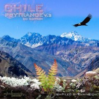 Compilation: Chile Psytrance Vol 2