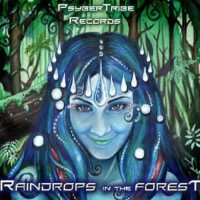 Compilation: Raindrops in the Forest